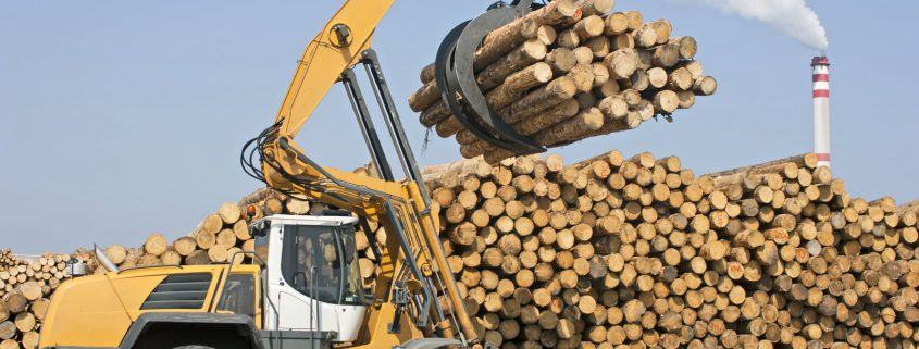 Blueskyrisk - Specialty Program Solutions - Wheel loader - Lumber industry